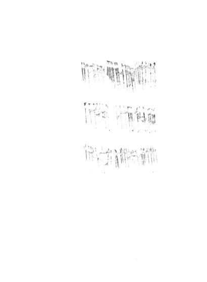 dermisache-4textos-site1-1
