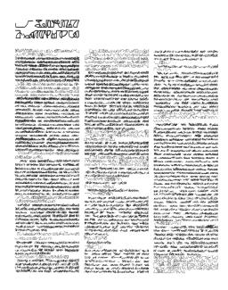 Mirtha Dermisache : Nueve Newsletters y Un Reportaje - El Borde, Mobil-Home, Manglar - Reportaje